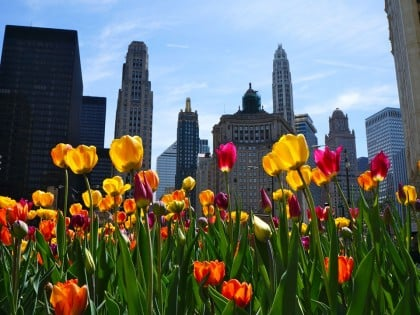 19 Exciting Spring Events You Must Experience