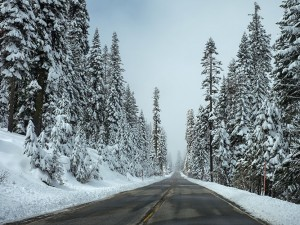 Make the Most of Your Winter Break with a Spontaneous Trip!