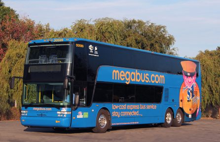 Photo of a Megabus on a sunny day, parked in a wooded area.