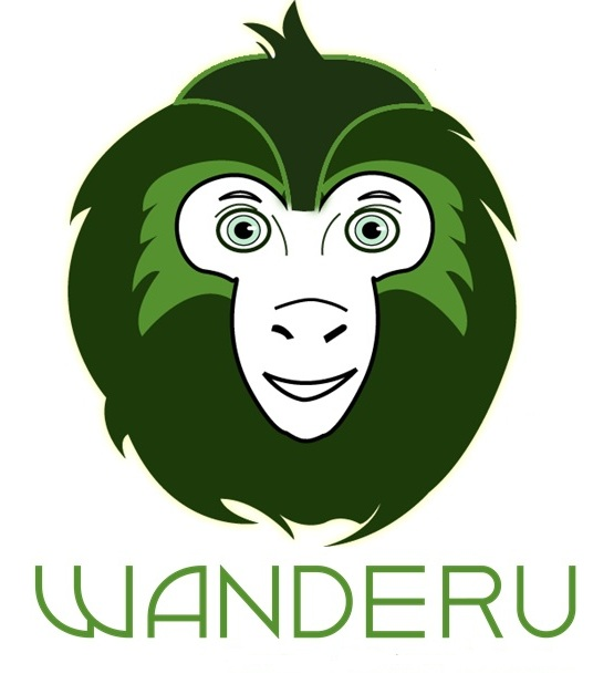 Wanderu coupon code