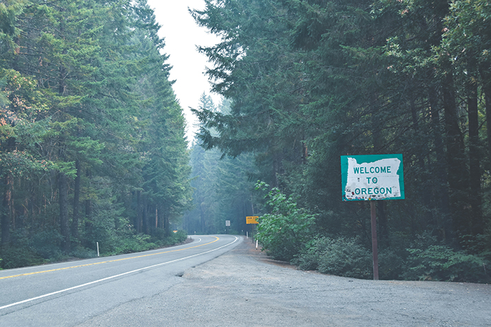 Photo of a highway in a forested area, with a sign beside it that says