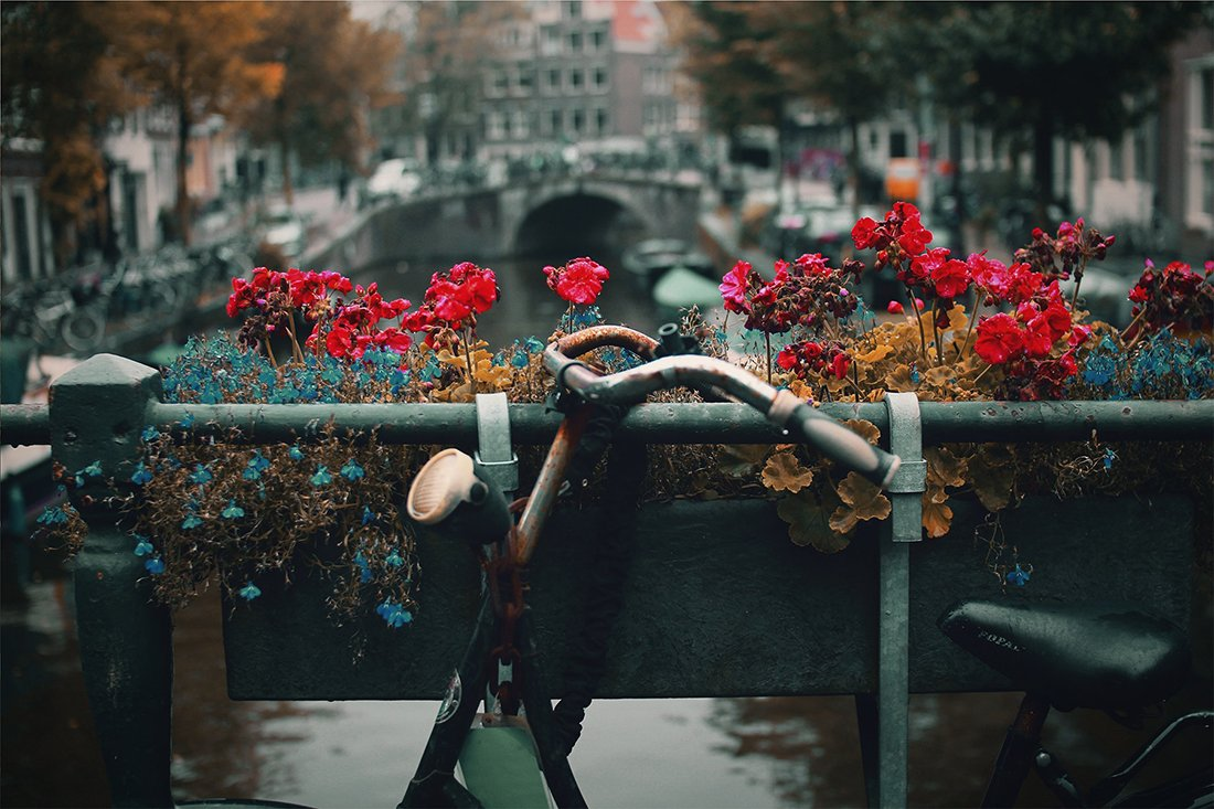 How to Visit 8 Awesome Cities in the Netherlands for Less Than $100