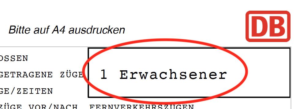 Screenshot of the word Erwachsener on a DB ticket.