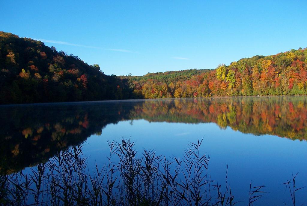 Photo of foliage near Green Lake near Syracuse, New York.