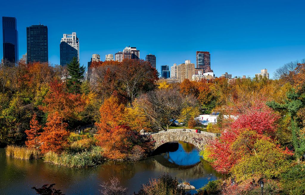 Photo of New York's Central Park in fall, with bright autumn colors.