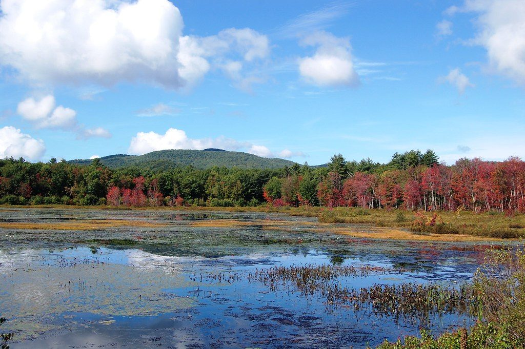 Photo of Maine in autumn.