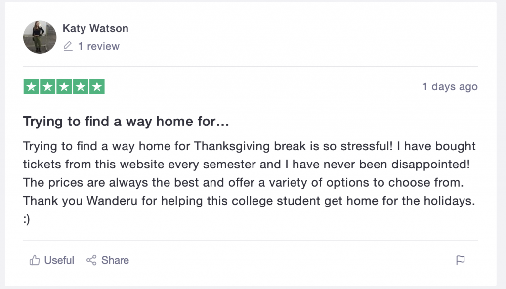 TrustPilot review of a Wanderu user who made it home for the holidays.