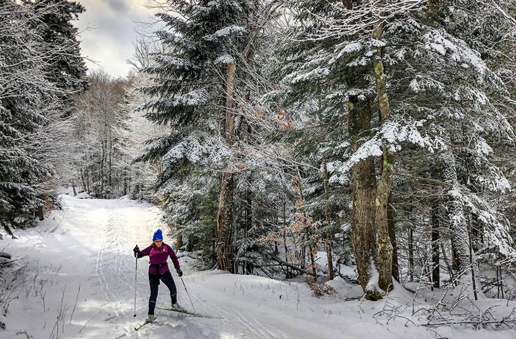 Photo of a skier in Lake Placid, NY.
