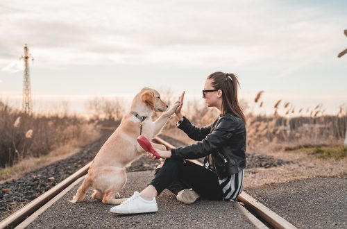 Photo of a girl and her dog before they board the Amtrak train.
