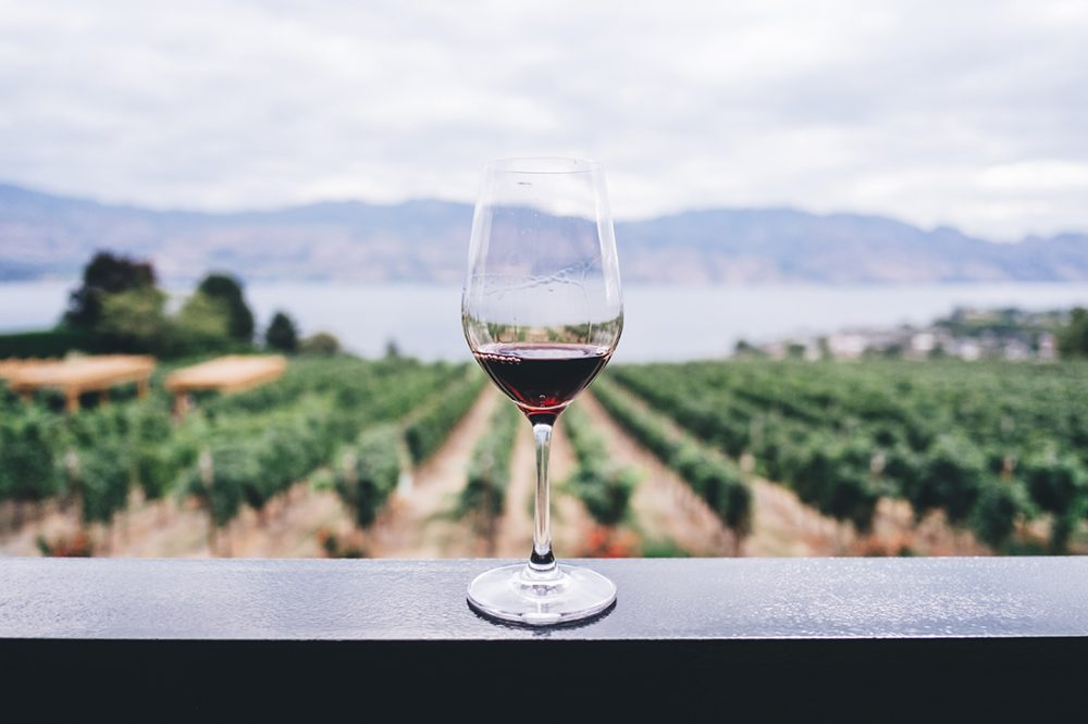 Photo of a wine glass perched on a rail overlooking a vineyard.